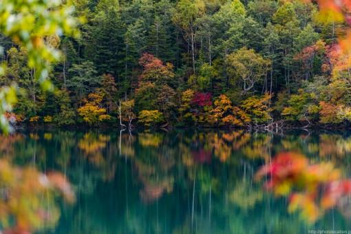 秋のオンネトー2