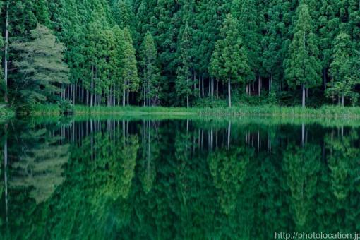 龍王ヶ淵の水面